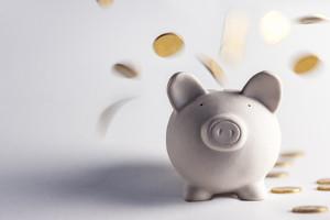 Die Prozesskosten können ggf. auch über Verfahrenskostenhilfe- oder -vorschuss verauslagt werden.