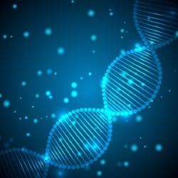 Das genetische Abstammungsgutachten bedarf der Zustimmung aller Beteiligten.