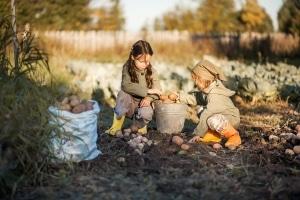 Die Teilungsversteigerung nach einer Scheidung zu verhindern ist vor allem bei gemeinsamen Kindern möglich.
